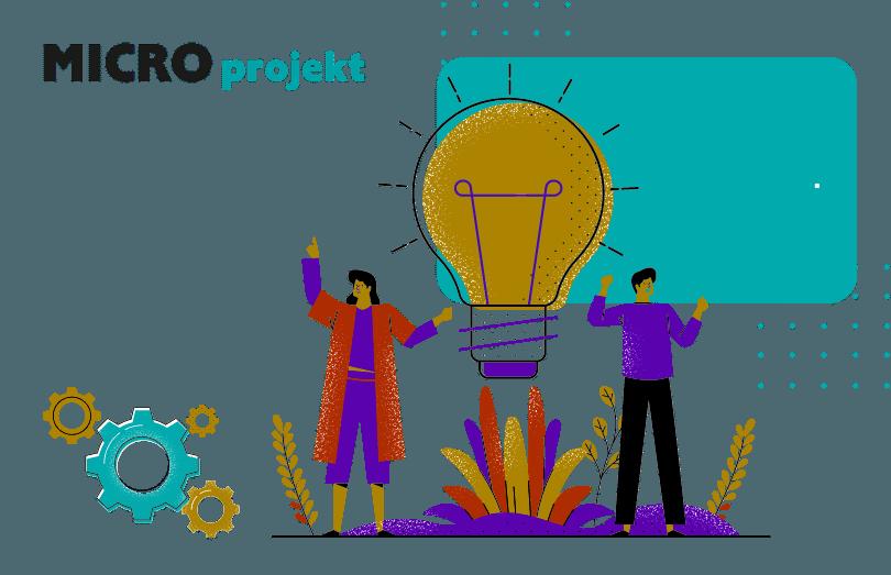 MICRO projekt